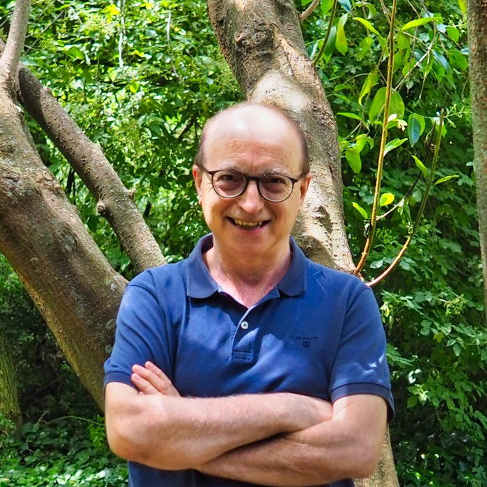 Martínez Molina, Vicente Javier